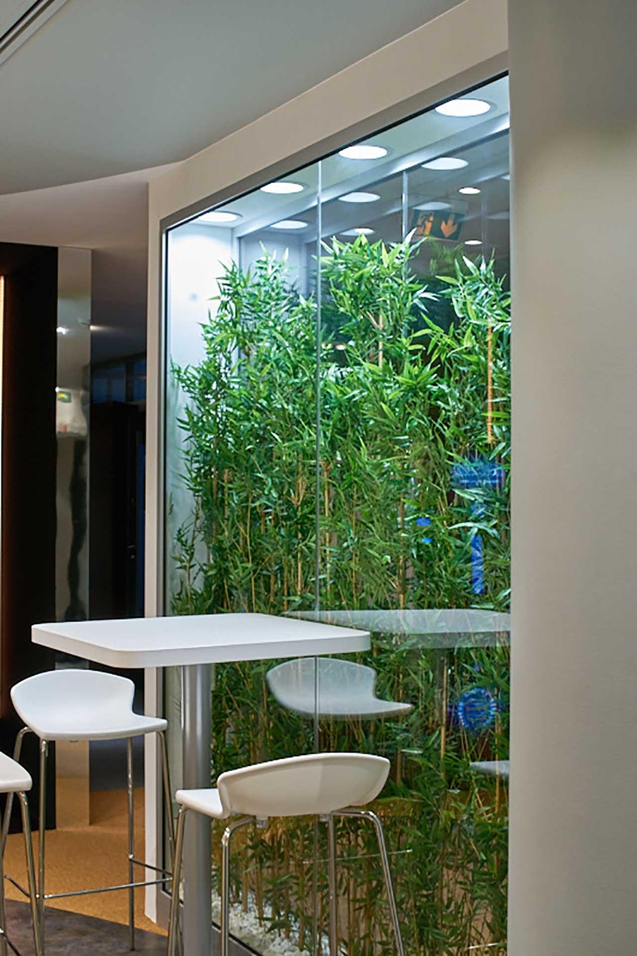 Cloisons amovibles vitrées végétalisées